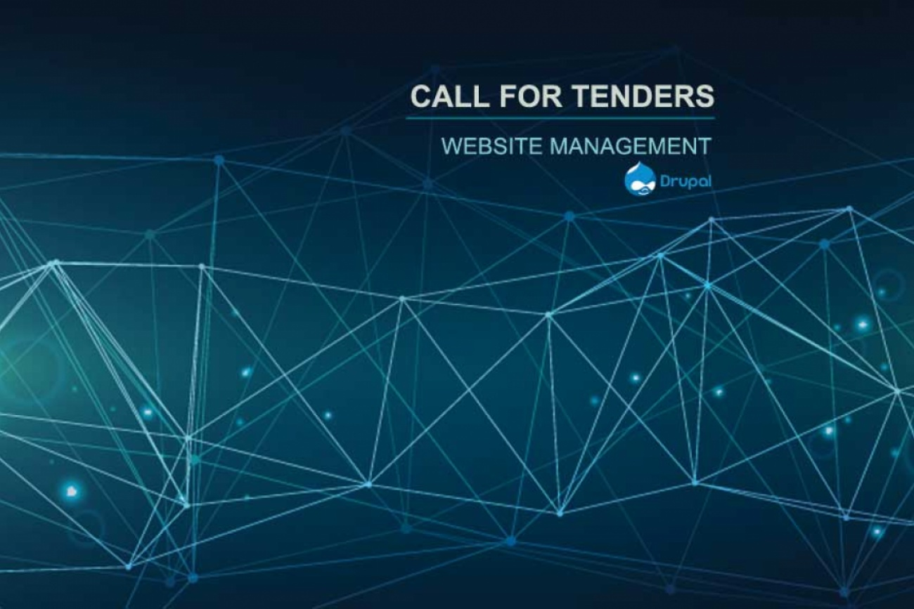 Website Management Call for Tenders : 2005 Convention | Diversity of