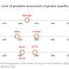 Gender Perception Swaziland