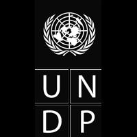 undp logo black diversity of cultural expressions
