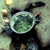 Traditional cooking, cooking pot
