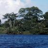 Landscape in Madagascar, seaside and vegetation, eau, banks, vegetation, birds