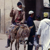 Fez, transportation means in the Medina, donkey