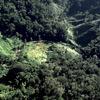 Environment, biosphere reserves