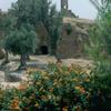 Fez Medina, the Merenides tomb