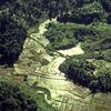 Environment, biosphere reserves, MAB program