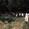 People walking in the Mananara biosphere reserve.
