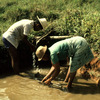 People working at the Mananara biosphere reserve.