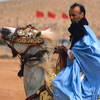 A horseman at the Moussem of Tan Tan, a festival of nomad tribes