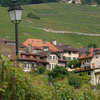 The cultural landscape of the Lavaux region bears traces of human interaction w