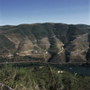Wine has been produced by traditional landholders in the Alto Douro region for