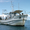 Scientific boat of the National Centre of Oceanographic Research, ocean preserv