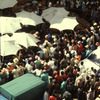 Market, general view, umbrellas, cars