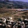 Byblos site, Mediterranean region