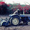 Agriculture, Ziguinchor experimental area, tractor in a field