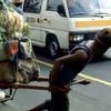 A men transporting vegetables.