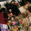 Everyday life, local flower market