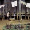 Village, children, laundry
