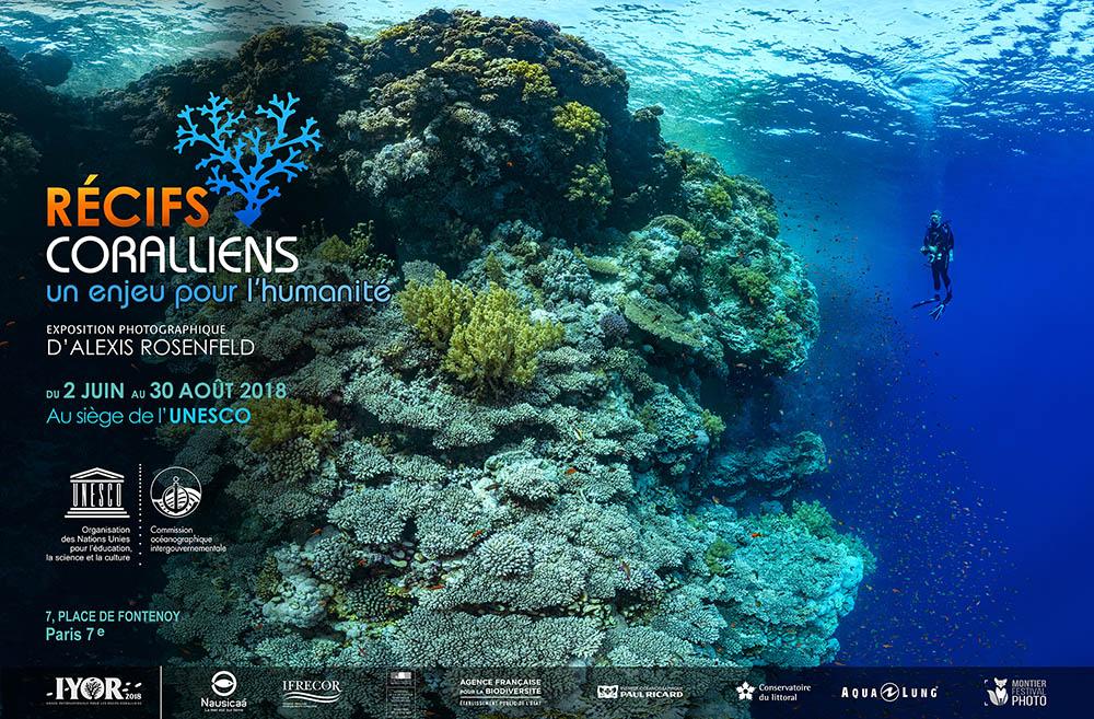 Exposition « Récifs coralliens, un enjeu pour l'humanité »
