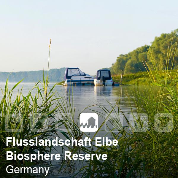 Flusslandschaft Elbe Biosphere Reserve , Germany