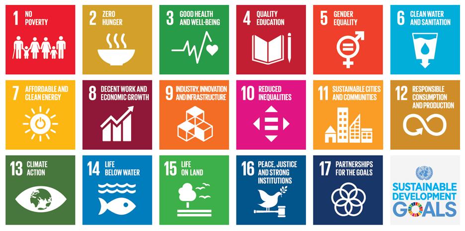 Bilderesultat for sustainable development goals