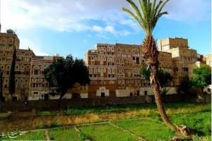 Al Qasimi Neighbourhood, Sana'a