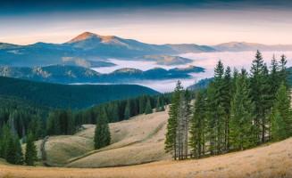 Карпатский биосферный заповедник, Закарпатская область, Украина