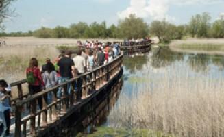 Mancha Húmeda Biosphere Reserve