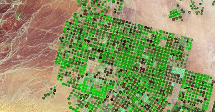 Crop circles, Saudi Arabia, 2012